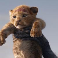 Recensione / Il re leone di Jon Favreau